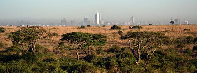 safari-sense-nairobi-city-view