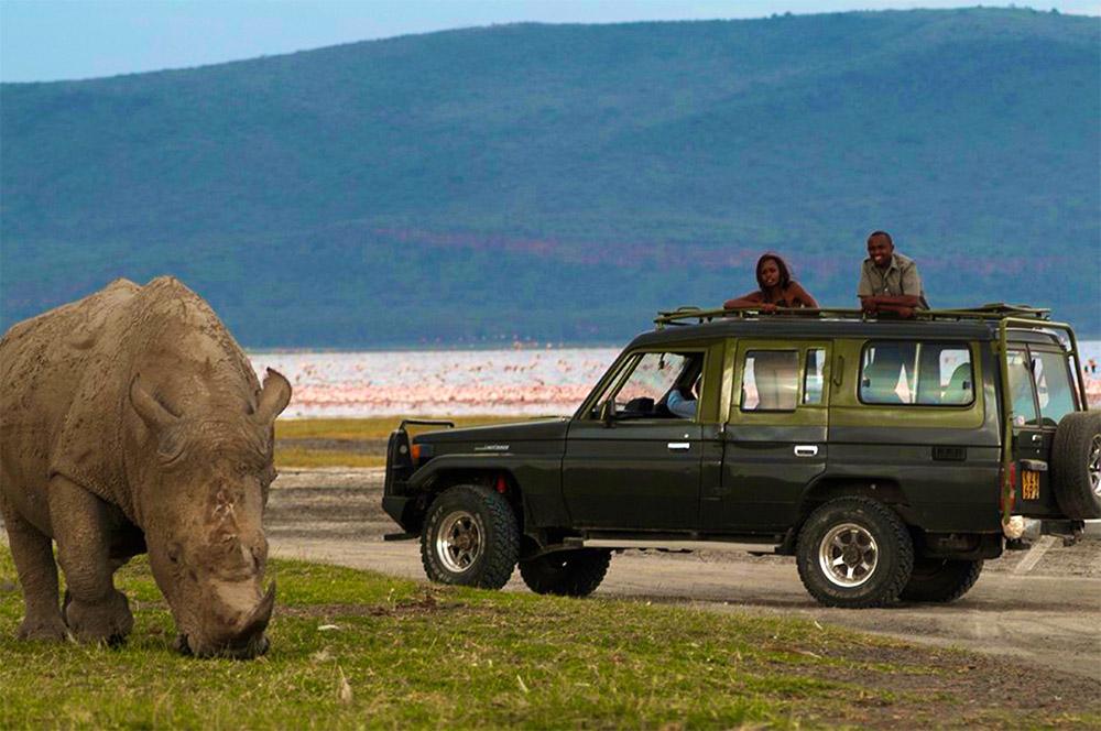 Safari_Sense_Nakuru_How_Stay