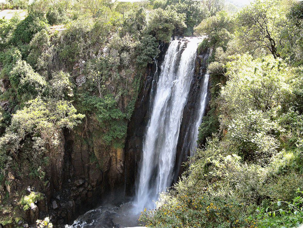 Safari_Sense_Thompsons_Falls_Blog